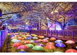 樱花与雨伞灯饰