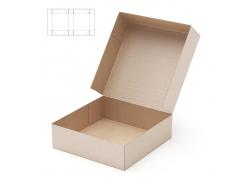 打开的包装盒效果图