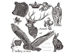 皇冠与动物素描图片
