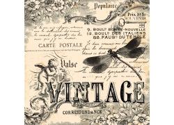 蜻蜓花卉图案欧式花纹背景