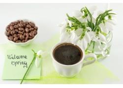 咖啡与雪滴花