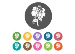 花蕾植物图标