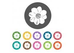 花卉植物图标设计