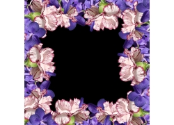母亲节康乃馨鲜花花框素材