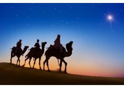 黄昏大漠骆驼队