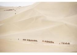 沙漠里的骆驼商队