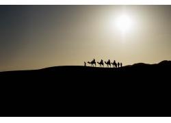 黄昏沙漠的骆驼队