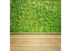 绿色墙壁和木板