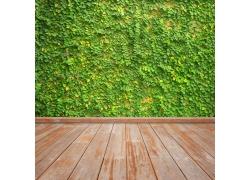 漂亮的绿色墙壁和地板