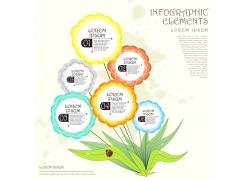 彩色植物花朵信息图表