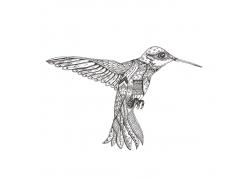 蜂鸟花纹插画图片