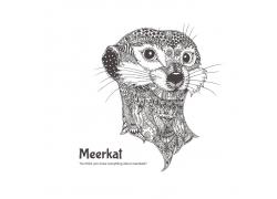 卡通猫鼬花纹插画图片
