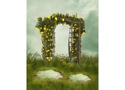 黄色花朵与野草