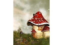 野草与蘑菇