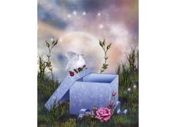 礼盒与花朵
