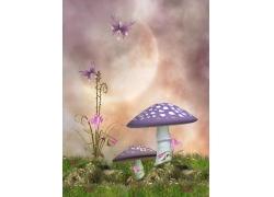 花朵与蘑菇