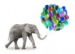 卷着气球的大象