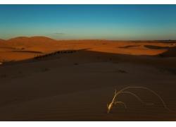 无际的沙漠