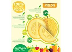 黄色哈密瓜信息图标