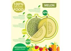 绿色哈密瓜信息图标