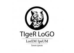 老虎插画logo设计
