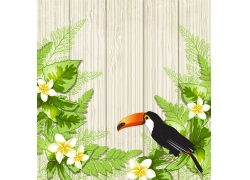 鹦鹉和白花背景