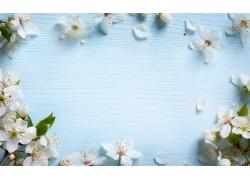 木板上的桃花
