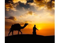 夕阳下的人物与骆驼