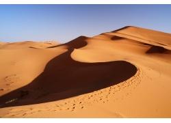 沙漠里的骆驼脚印