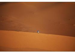 沙漠里的人物