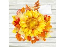 木板上的向日葵花
