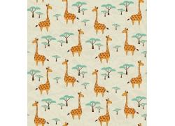 长颈鹿和树木图片