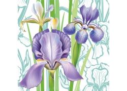 紫罗兰花卉图案素材