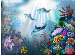 大海中的海豚和狮子鱼图片