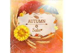 秋天的卡片与向日葵花