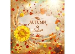 秋天的树叶与向日葵花