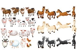 动物形态动作设计插画