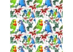 百合花鹦鹉水彩背景