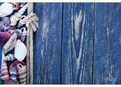 木板上的麻绳和海螺