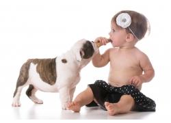 婴儿与动物摄影图片