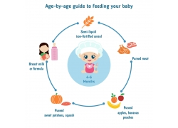 小小厨师饮食搭配图表