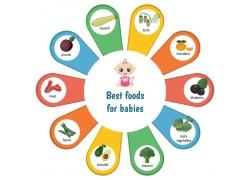 婴儿营养信息图表