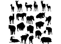 矢量动物剪影设计图片