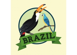 巨嘴鸟和鹦鹉标签图片