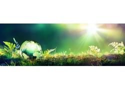 绿色的星球