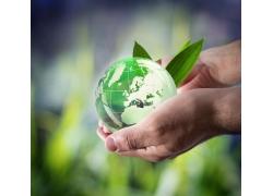 手上的地球和绿叶