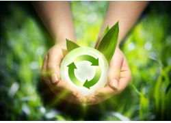 手中的绿色环保