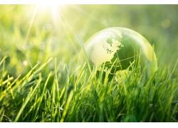 草地上的地球和阳光