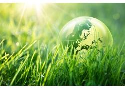 阳光下的草地和地球