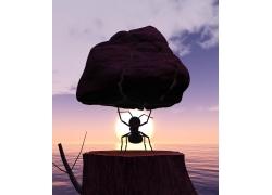 举着石头的蚂蚁
